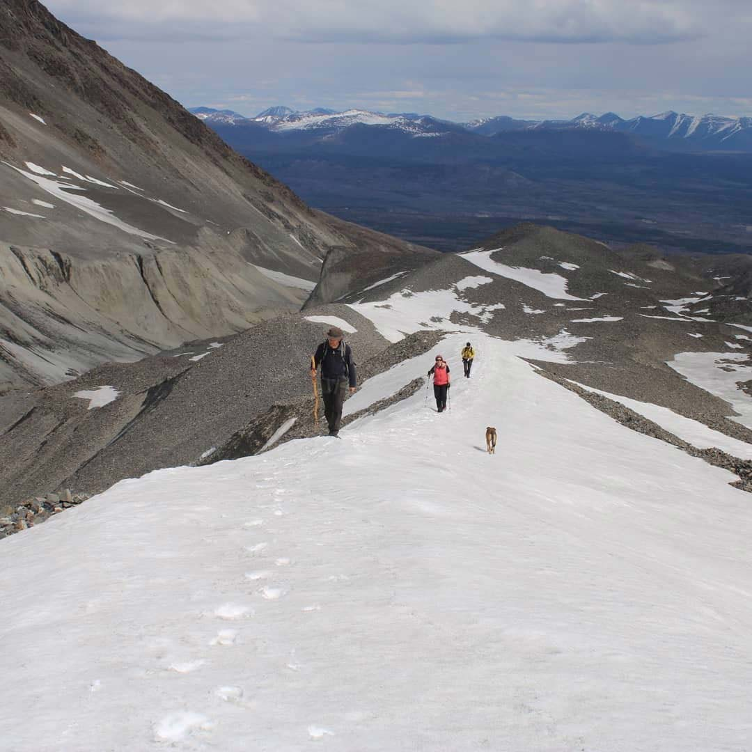 Come on a snowshoe tour with Yukon Guided Adventures