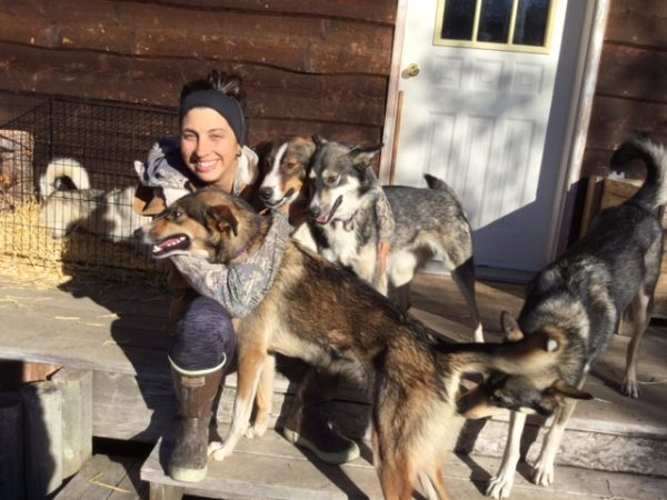 Dog Mushing in the Yukon. A one of a kind experience